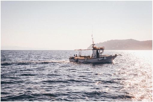 Matériel de pêche en mer